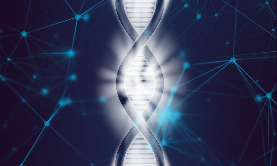 ADN-ul si Campul informational