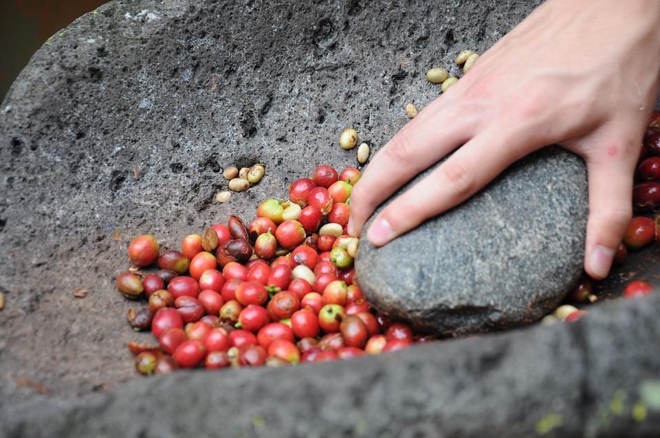 Cafeaua, parte din istoria umanităţii