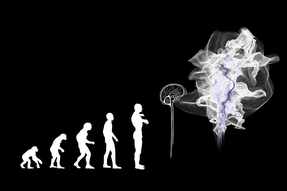 Inteligenta umana, un mecanism complex
