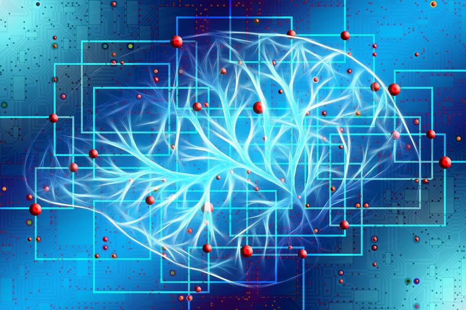 Mecanismele gandirii umane si inteligenta