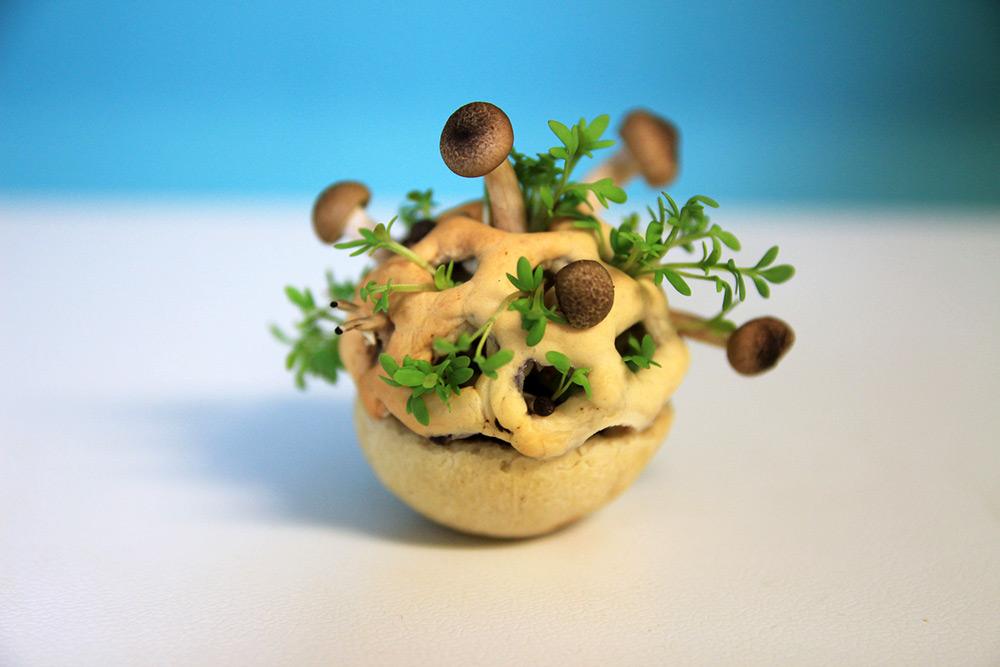 Hrana viitorului, Sursa: Colossal