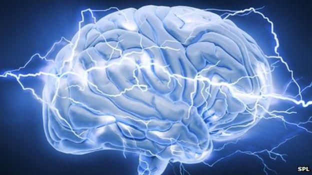 Creierul uman, Sursa: BBC.co.uk