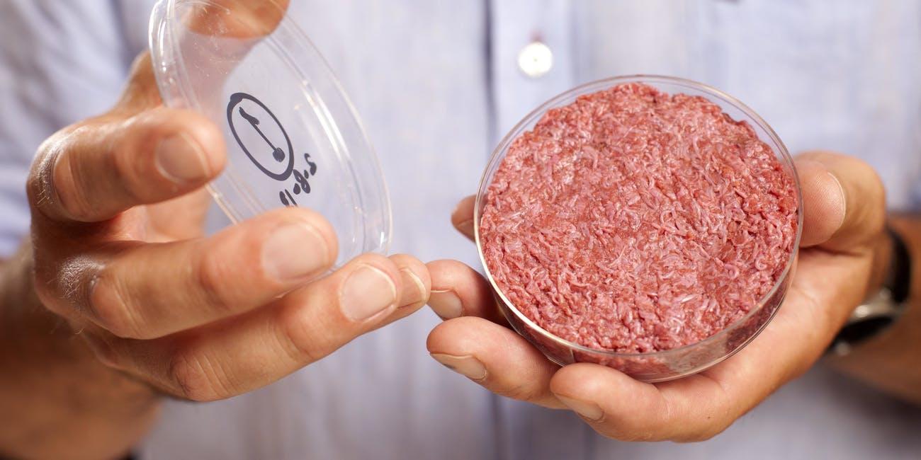 Carne in vitro, Sursa: Inverse