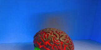 Creierul se spală în fiecare noapte, o descoperire spectaculoasă