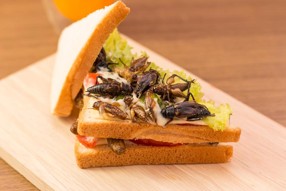 Hrana viitorului, Sursa: Science ABC