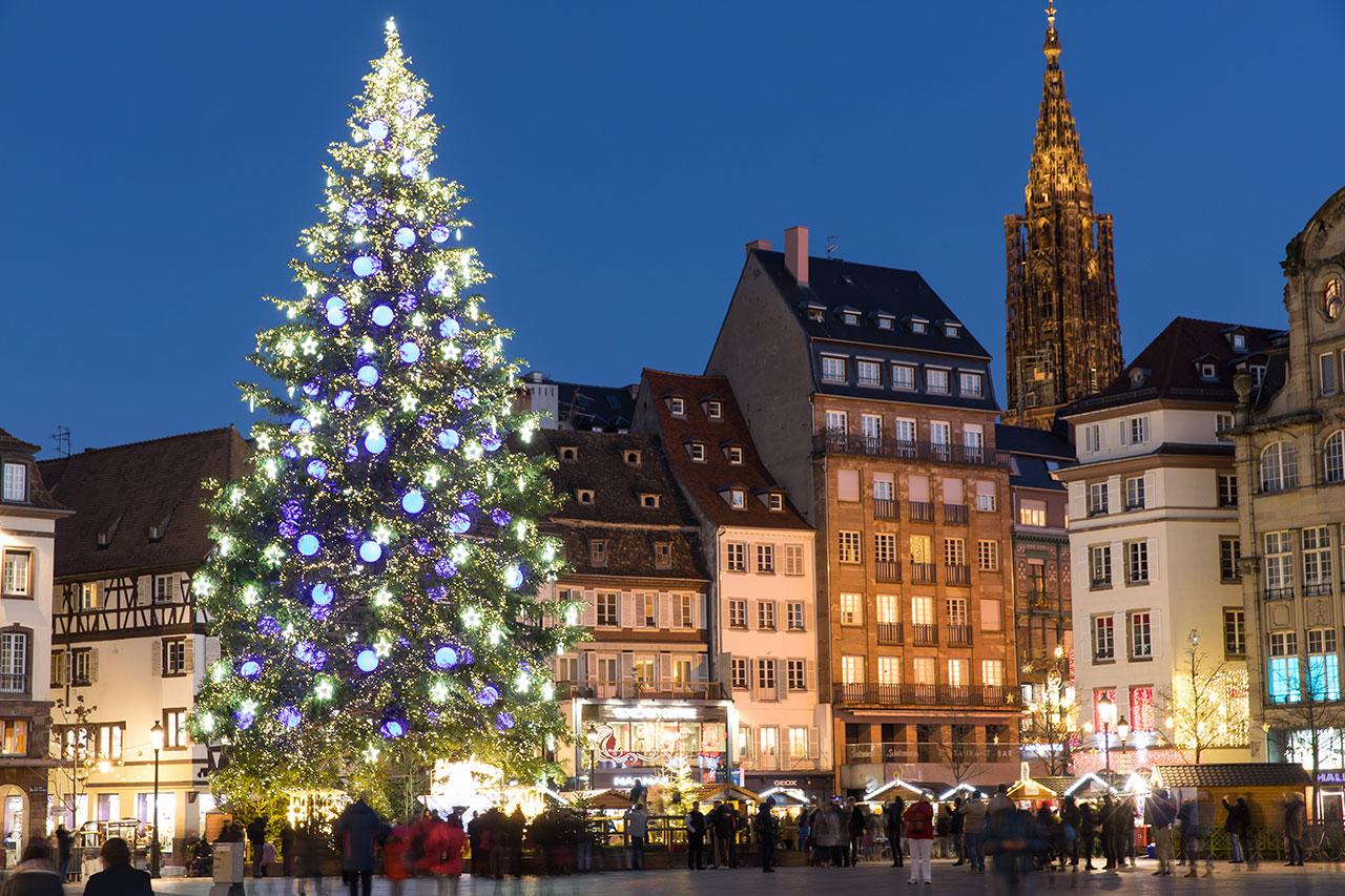 Brad de sarbatori, Strasbourg