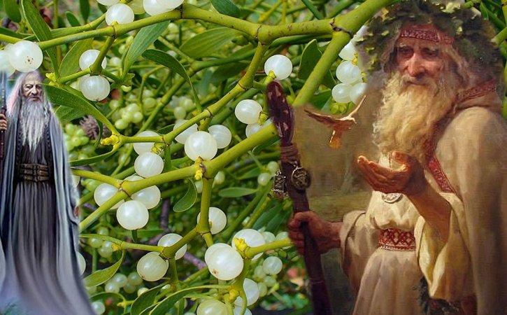 Creanga de aur si ritualurile druizilor