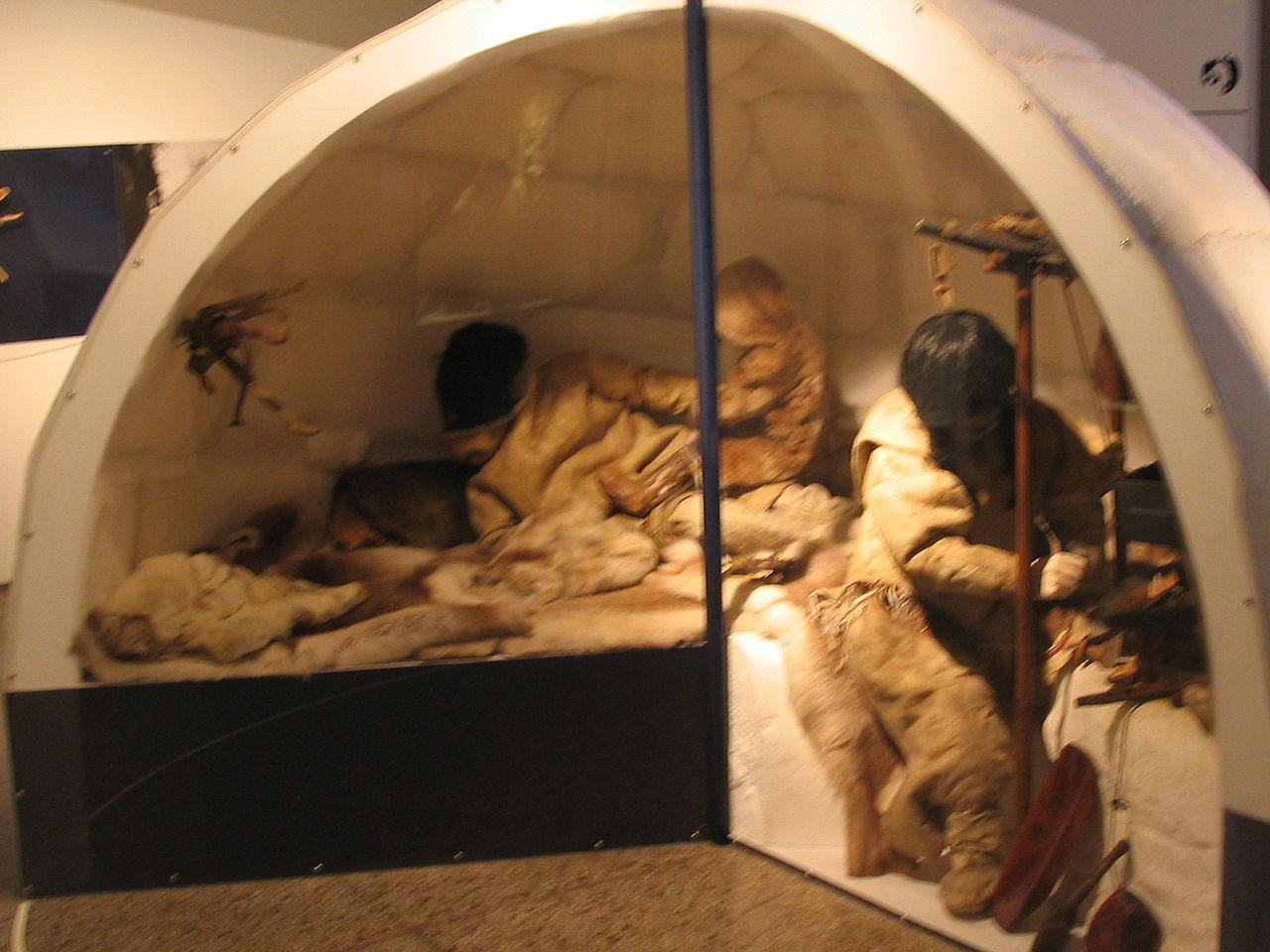 Interiorul unui iglu, Muzeul din Oslo