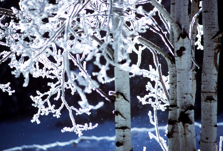 Solstiţiul de iarnă 2019, in asteptarea Luminii