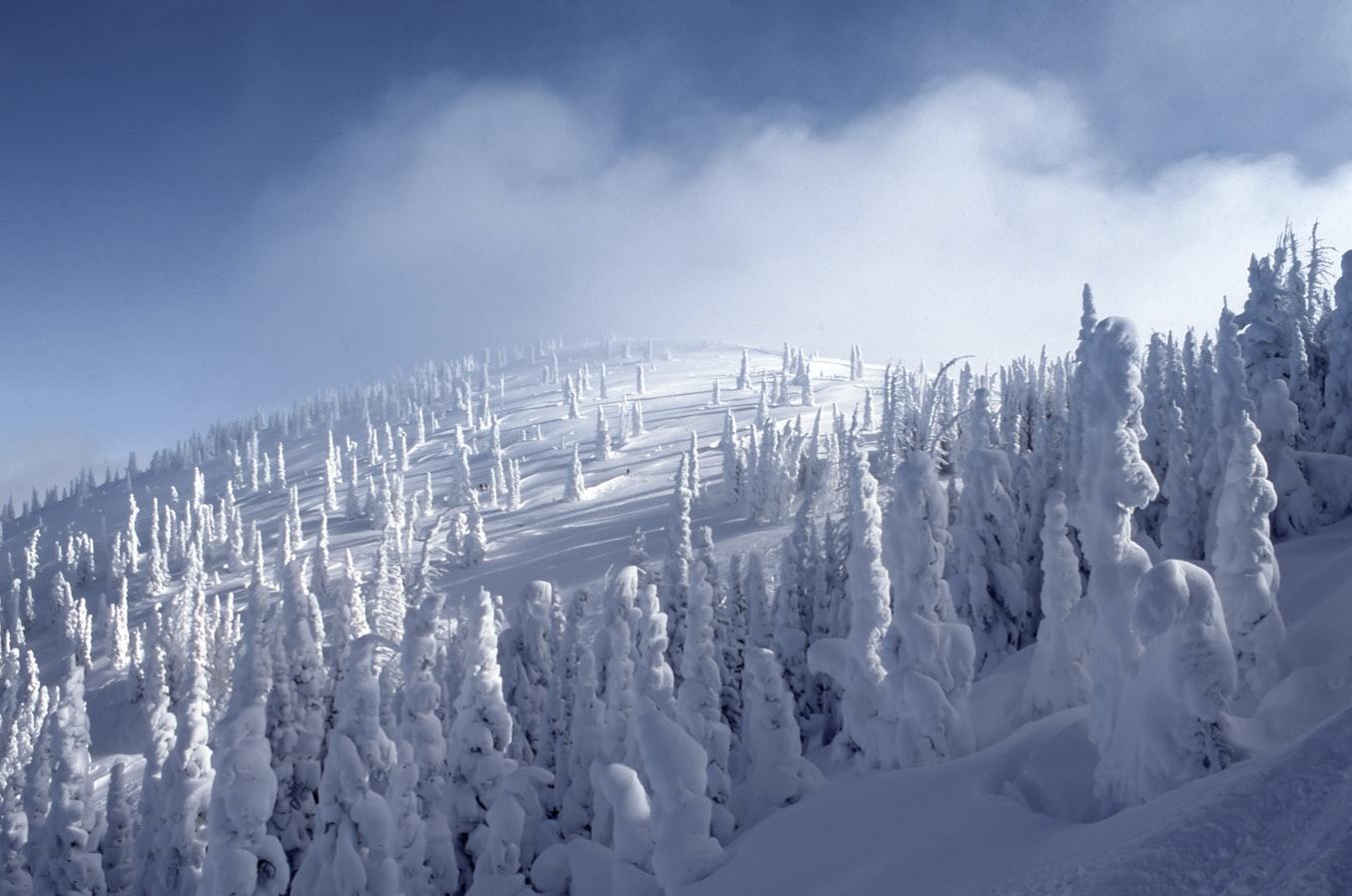 Solstiţiul de iarnă si anotimpurile