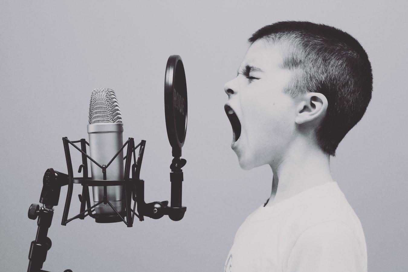 Vocea este o amprentă unică a personalităţii