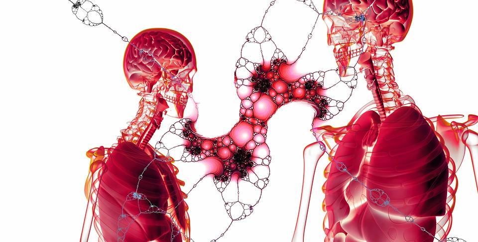 10 invenţii, producerea de organe în laborator