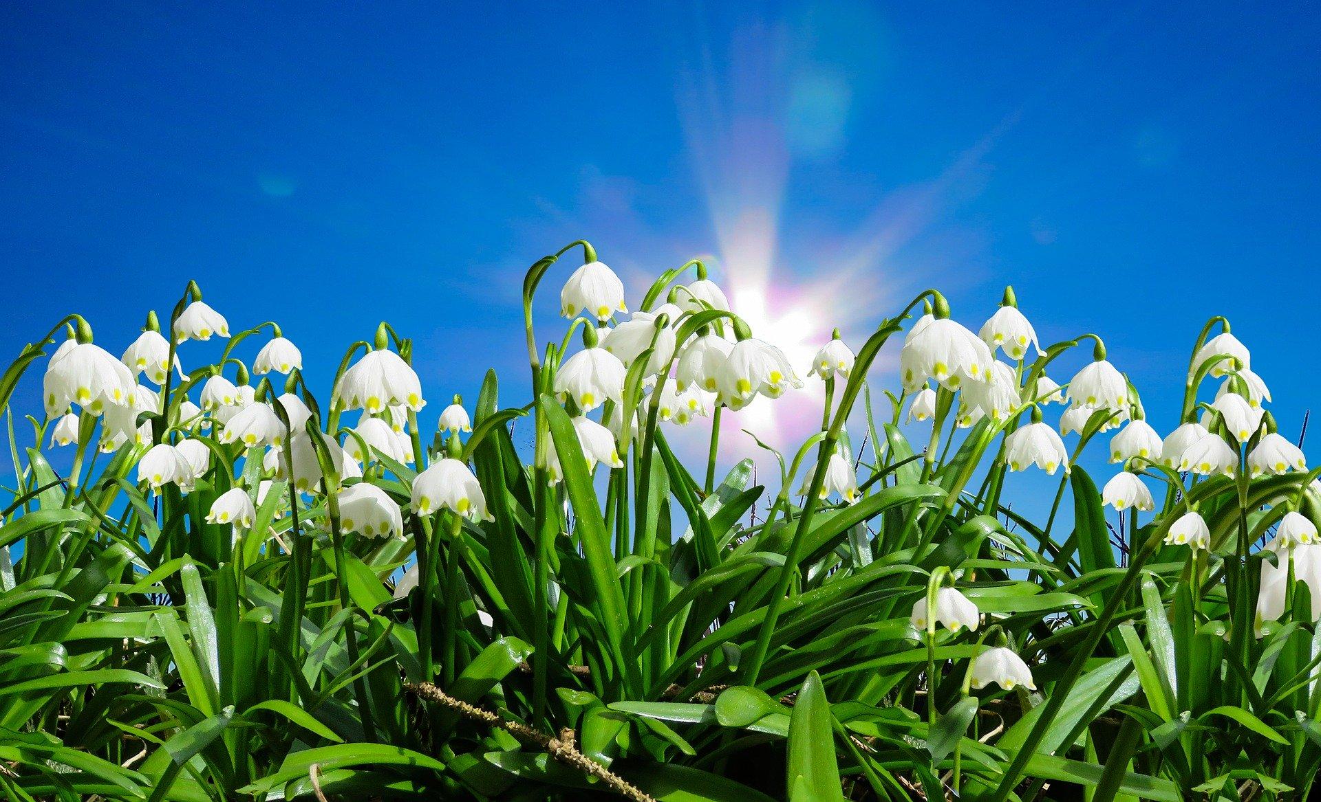 Zilele Babei Dochia– reperele mitologice ale începutului de primăvară