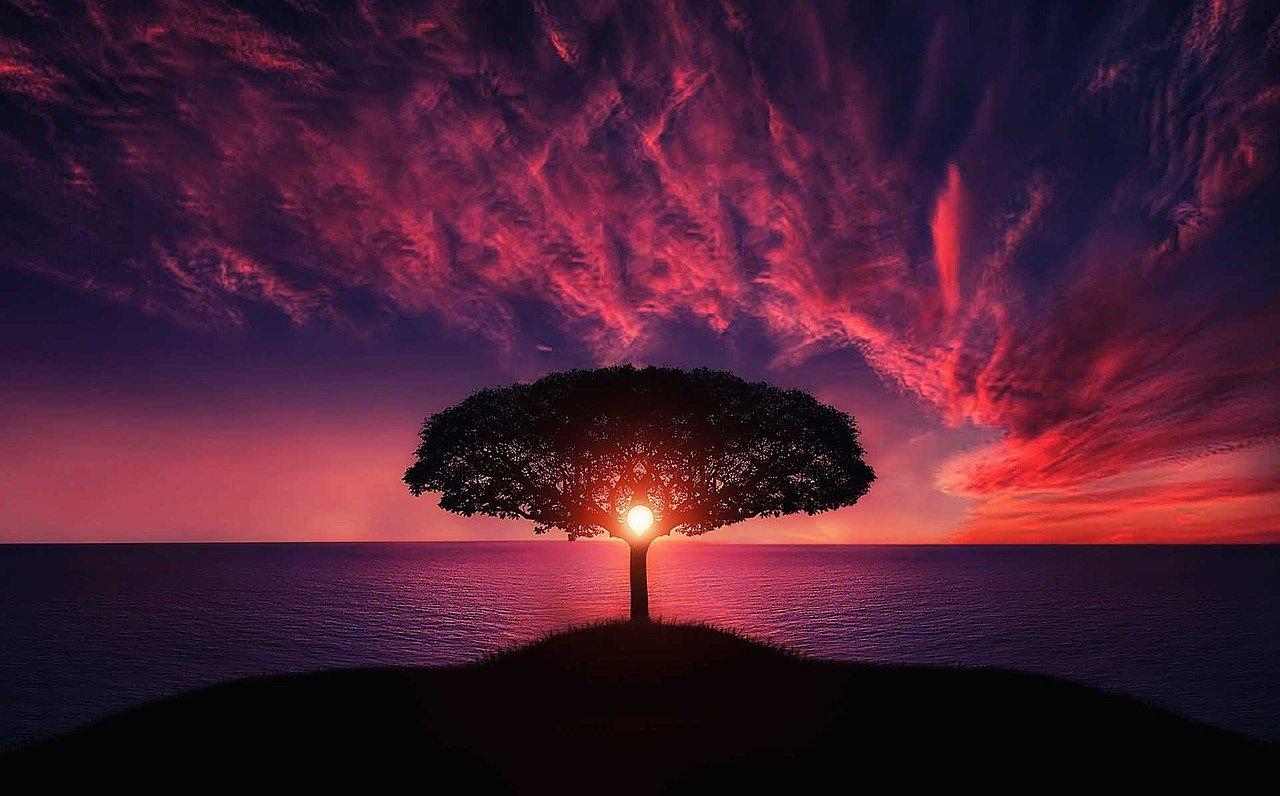 Ipoteza Gaia si Planeta vie