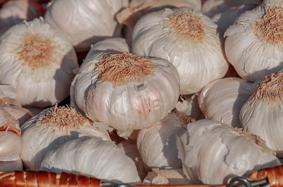 Plămâni sănătoşi cu ajutorul plantelor, usturoi
