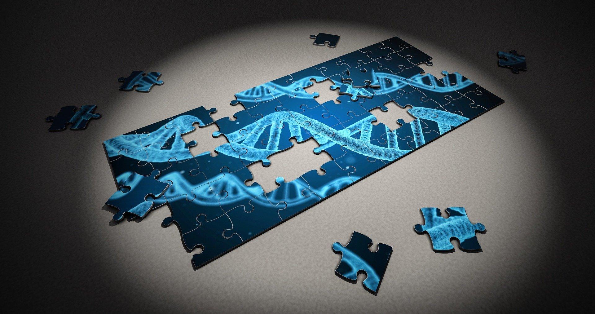 Mutatiile genetice