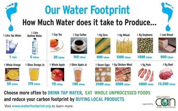 Apa consumata pentru diverse alimente, Sursa Whatsorb