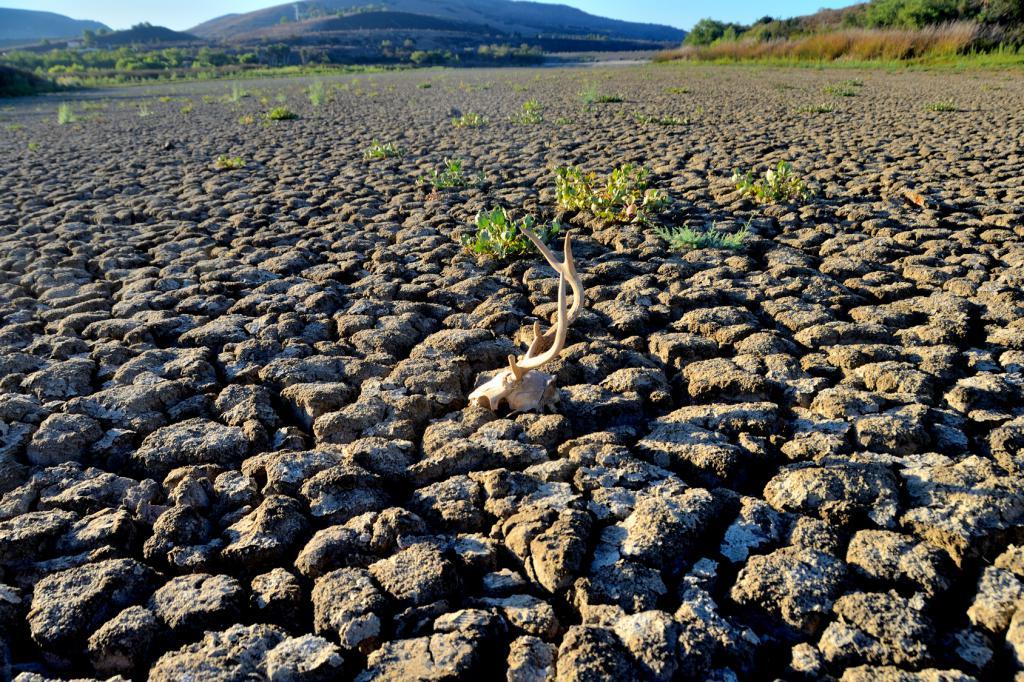 Desertificare, Sursa europa.eu