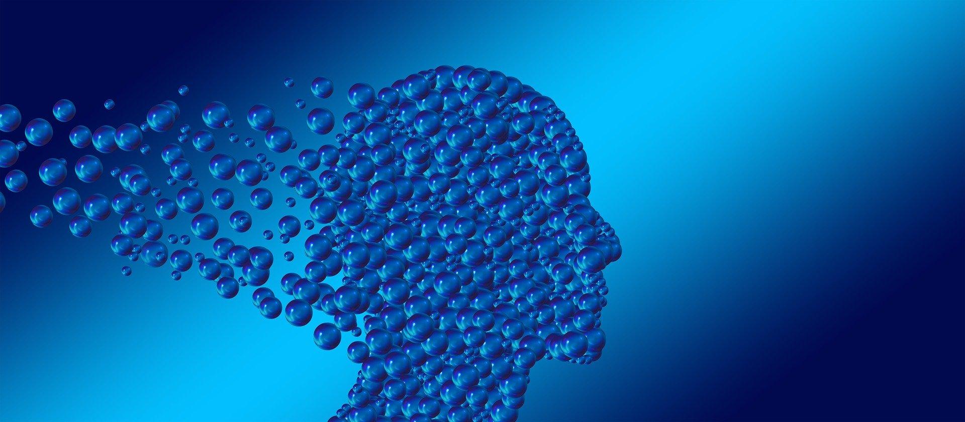 Schemele de gândire şi biasurile cognitive