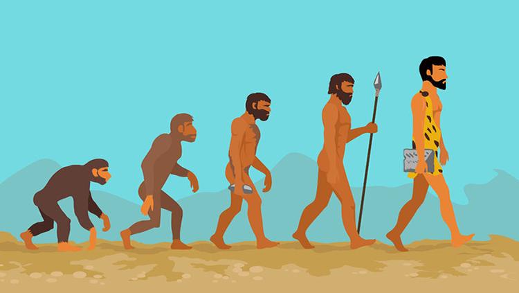 Evolutia omului si Limbile vorbite pe Terra, Sursa BrainFacts