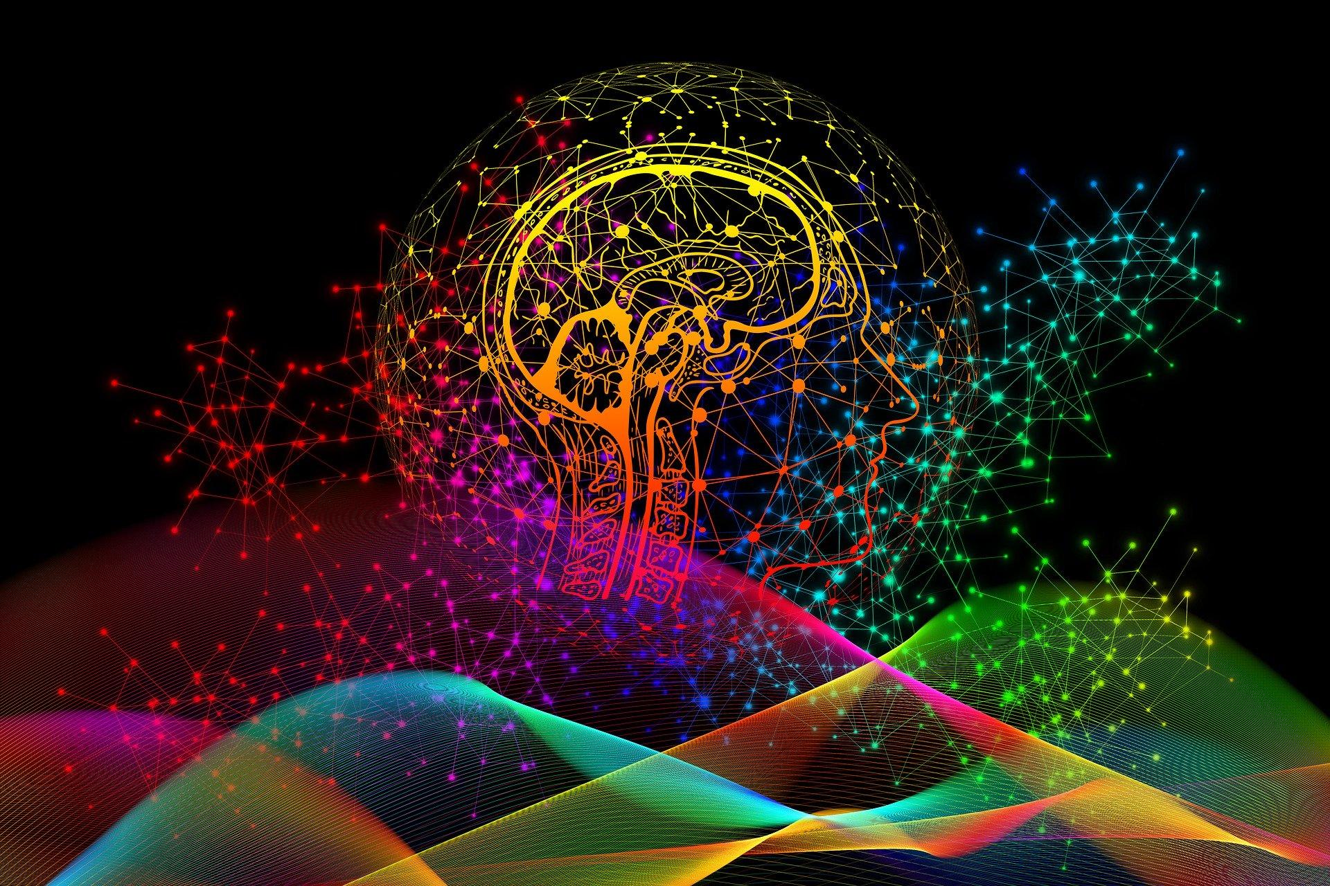 Super-seniorii – performanţe intelectuale ca la 20 de ani