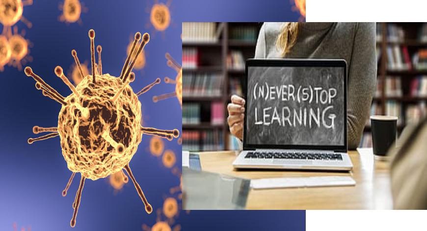 Deschiderea anului şcolar 2020 - 2021 şi pandemia de Covid-19, Sursa BW Education