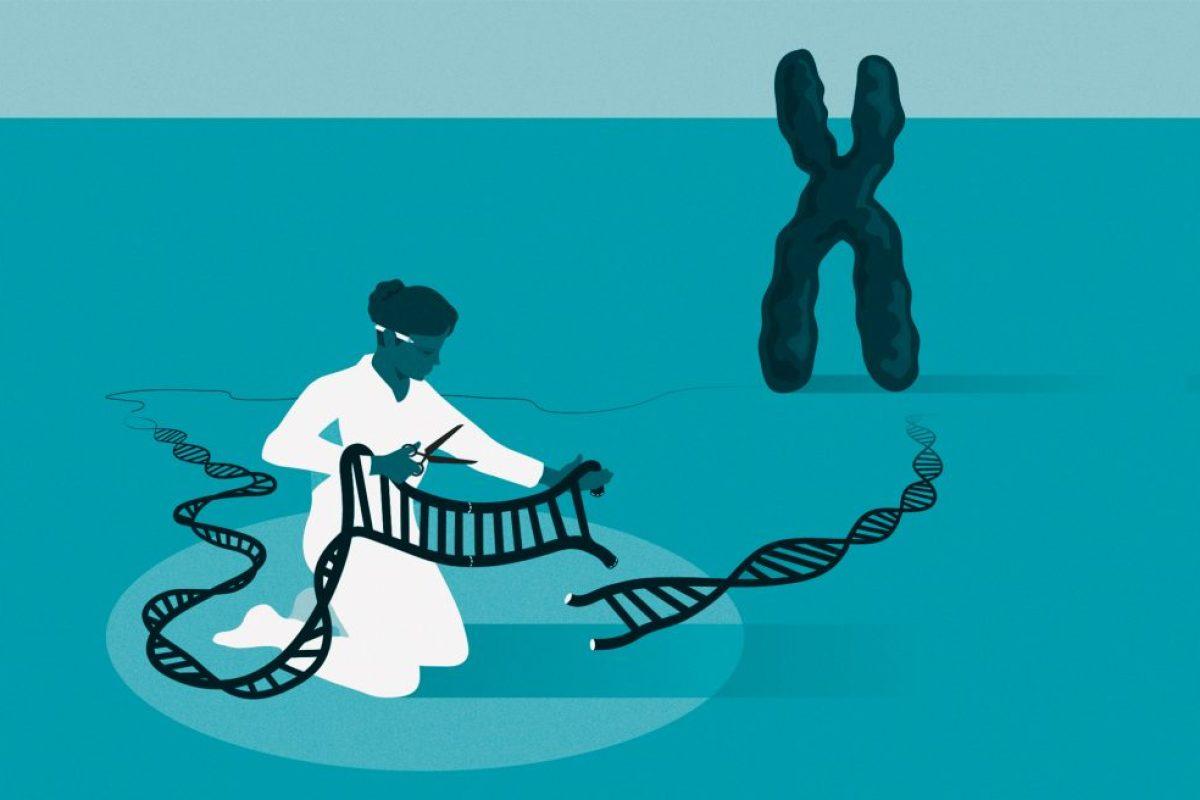 CRISPR- Cas9