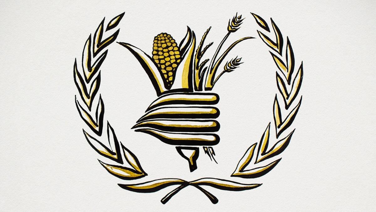 Programul Alimentar Mondial, World Food Programme – WFP