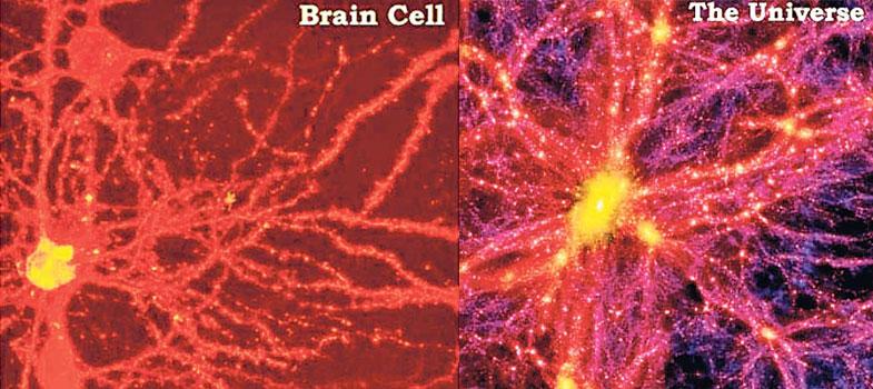 Creierul uman şi Universul, Sursa ZME Science