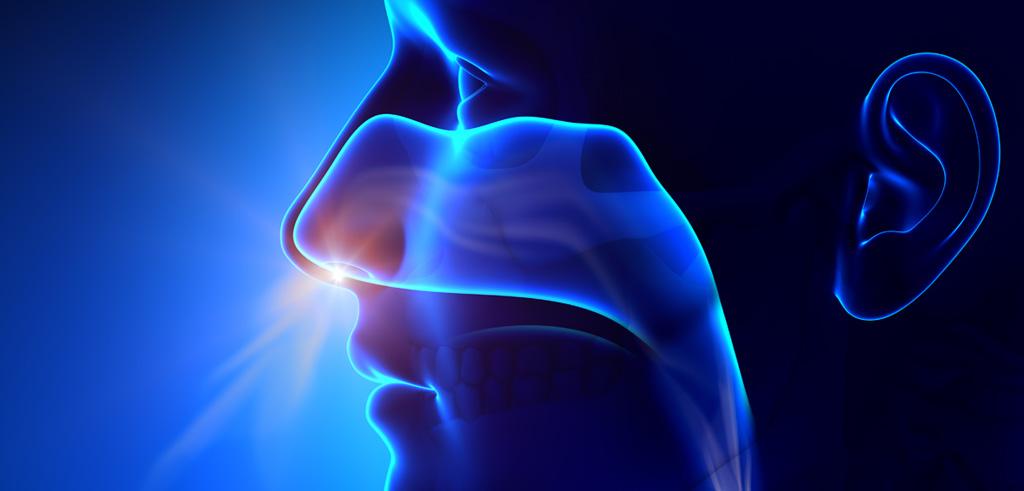 Pierderea mirosului si a gustului, Sursa fluimucil.co