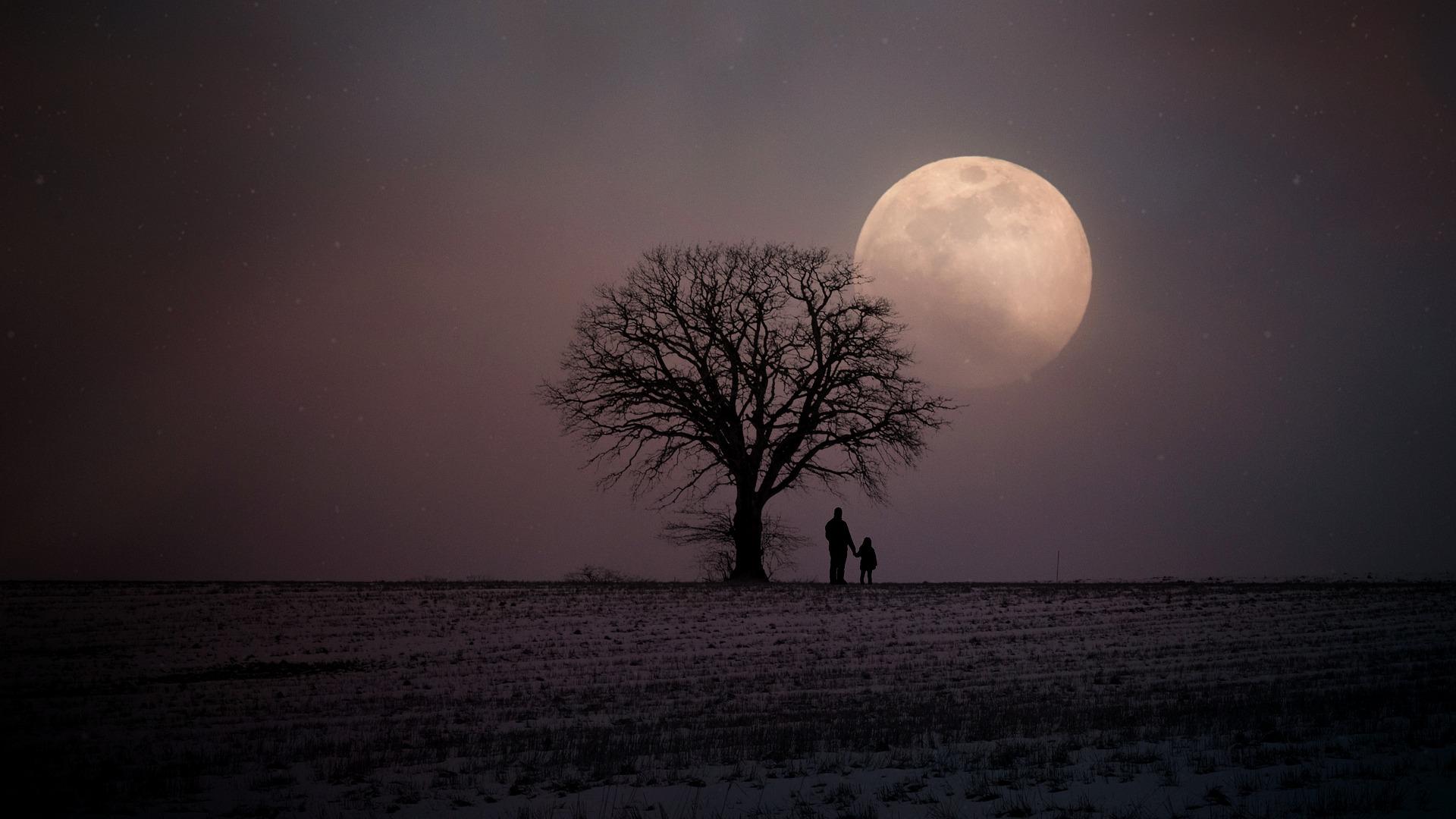 Peisaj hibernal cu luna