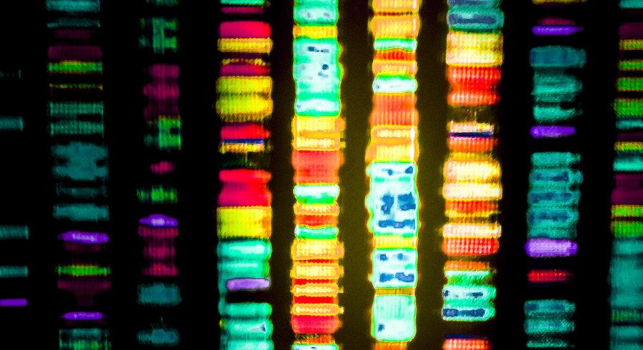 Analiza patrimoniului genetic