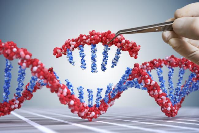 Secventierea genomului uman