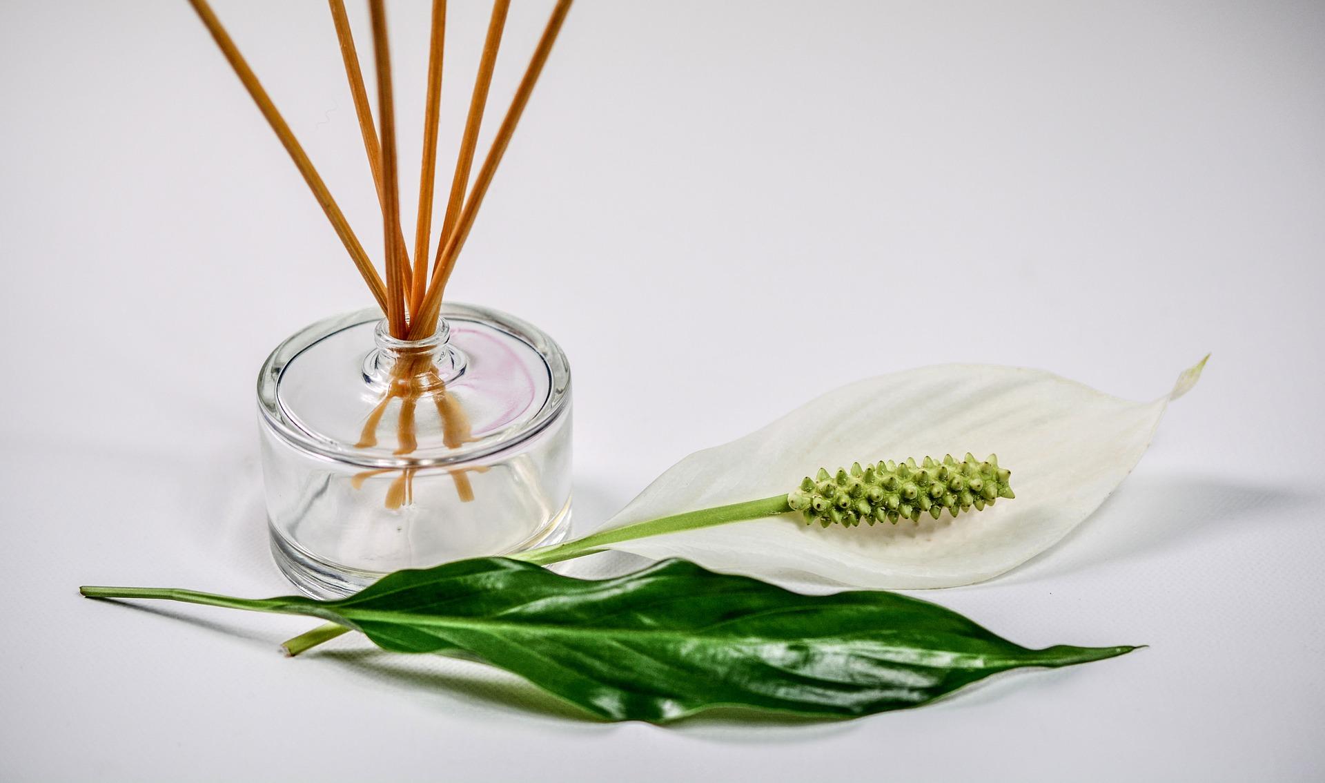 6 sfaturi pentru mirosuri naturale şi proaspete în locuinţă - apa florala