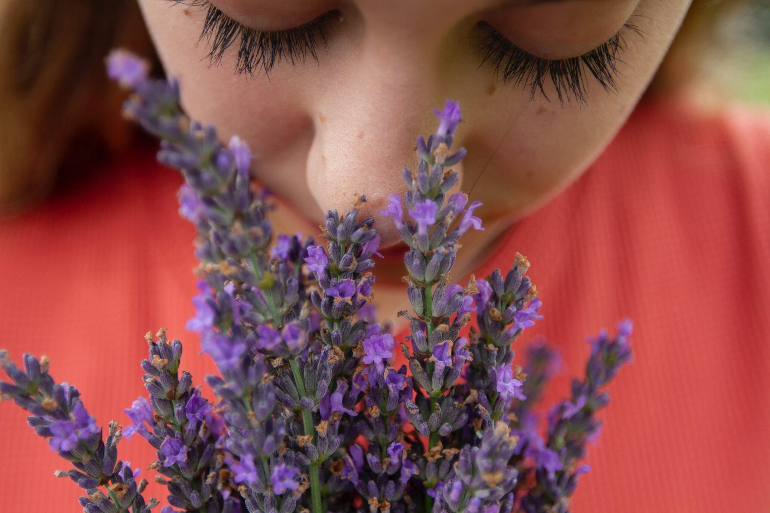 Mirosul