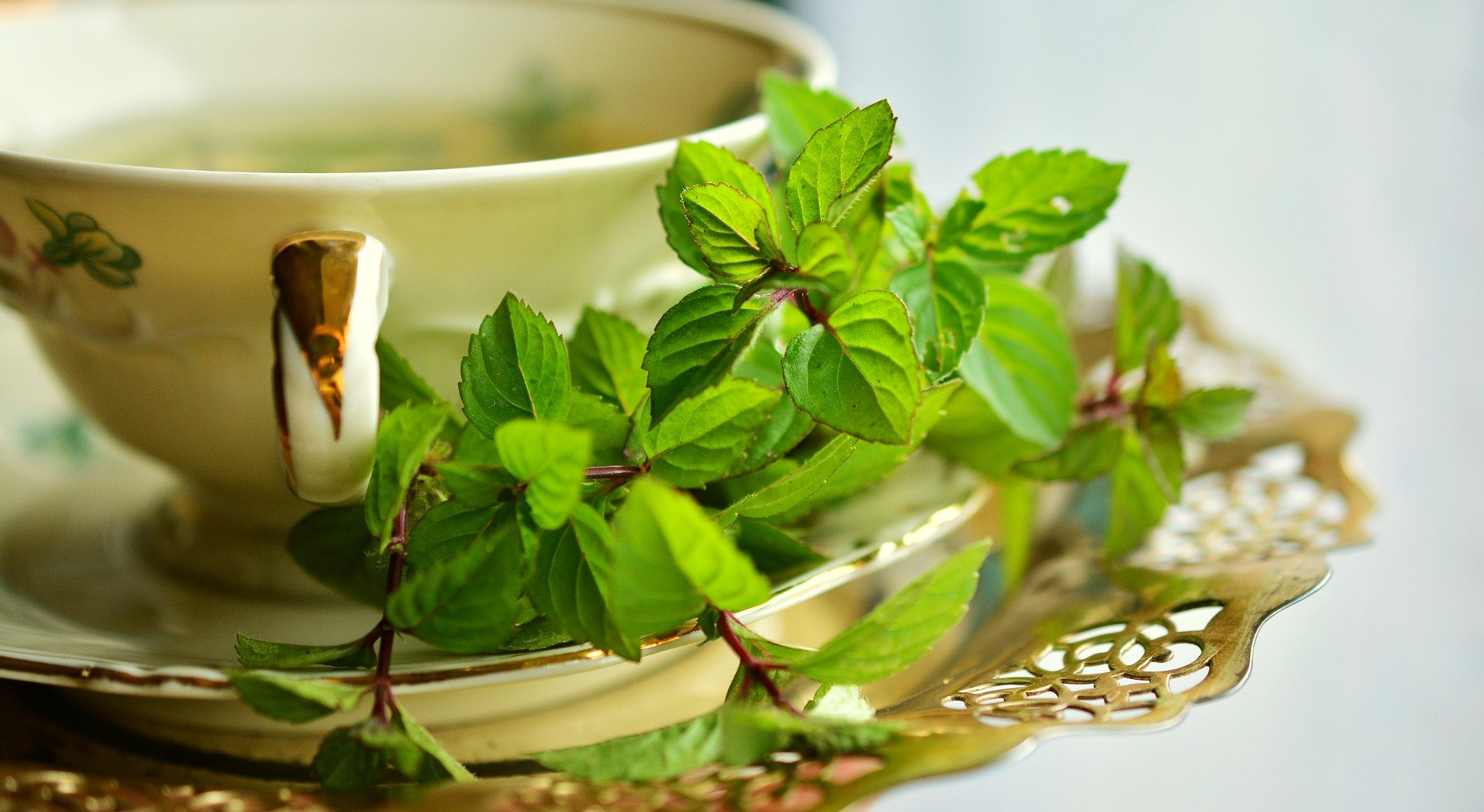 Ceaiul, istorie si cultura
