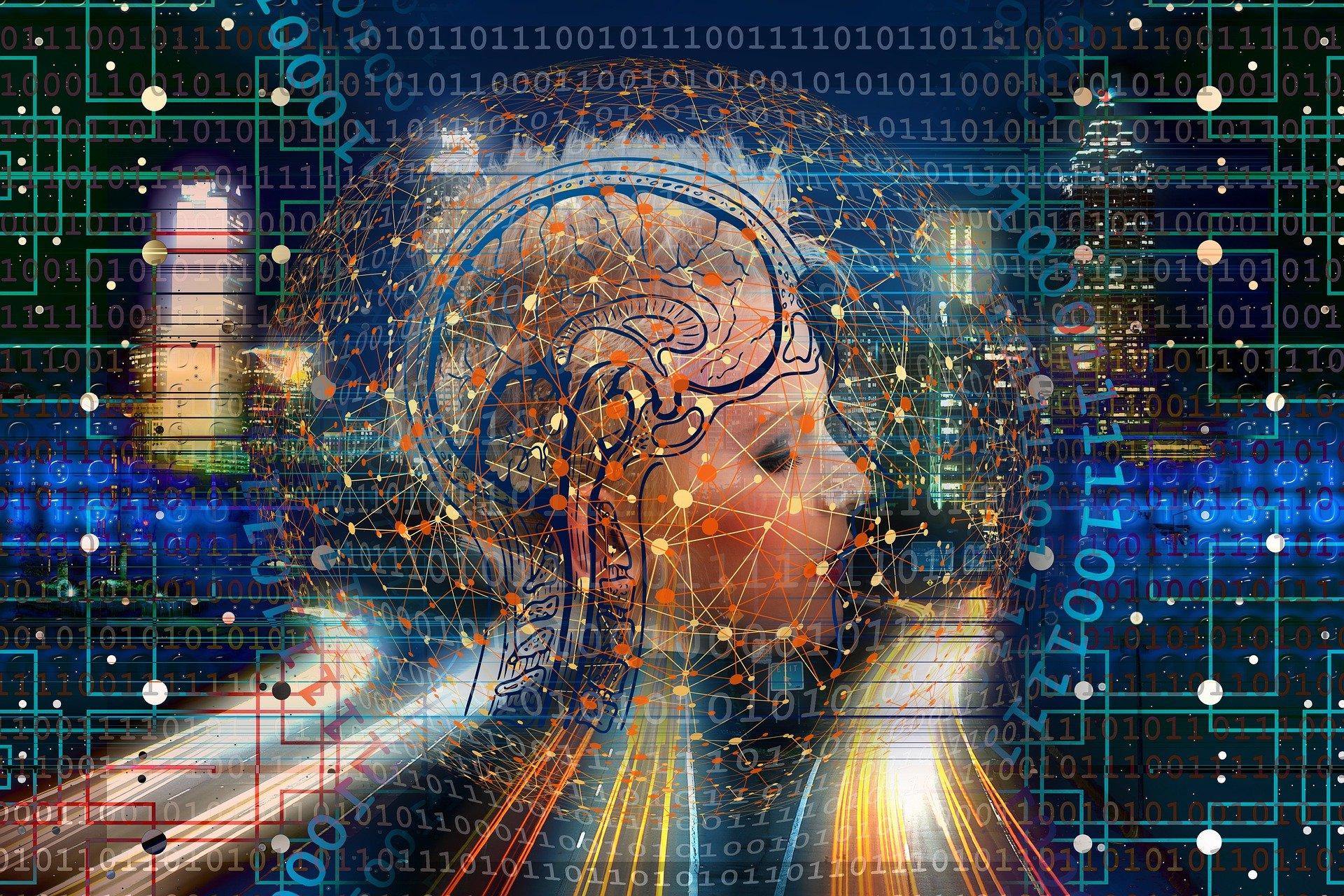 Profesia şi modificarea creierului