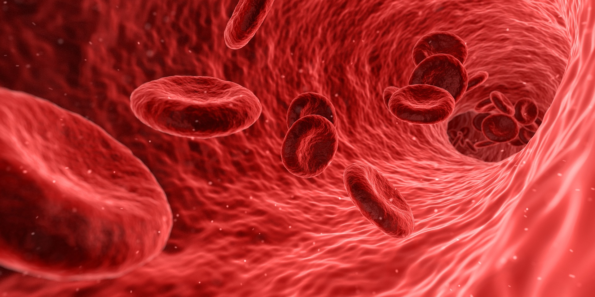 Celule sanguine