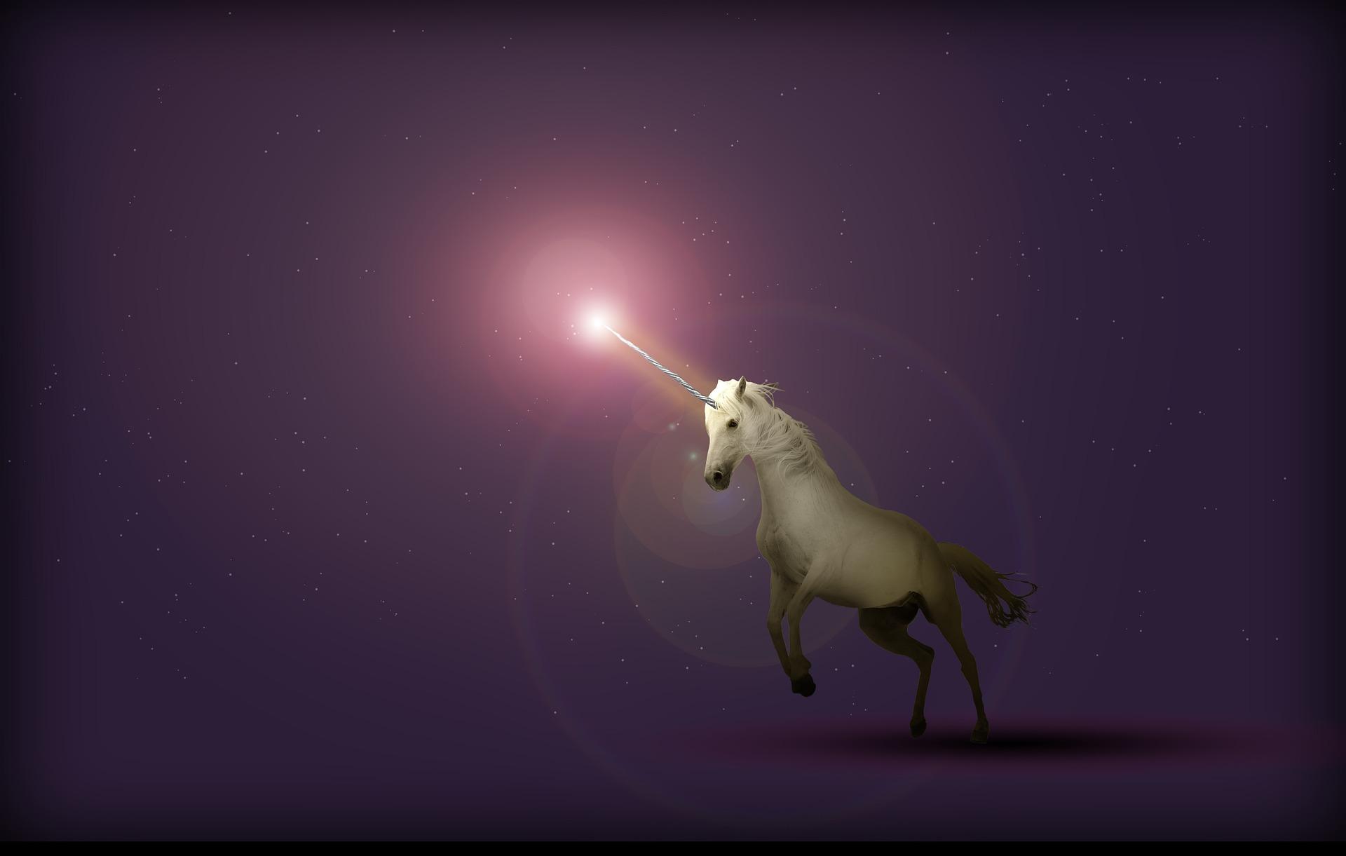 Ştiaţi că... Unicornul
