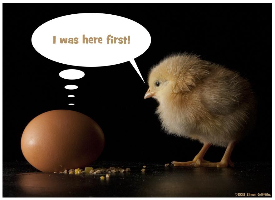 "O dilema ""filosofica - oul sau găina?"