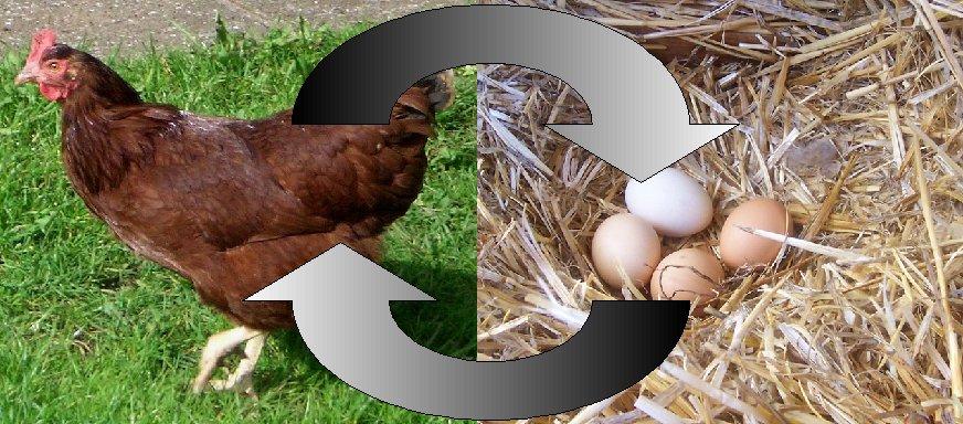 Oul sau găina? Ce a fost mai întâi? - oamenii de ştiinţă pretind că au găsit răspunsul
