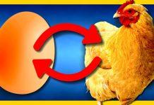 Ce a fost mai întâi, oul sau găina?