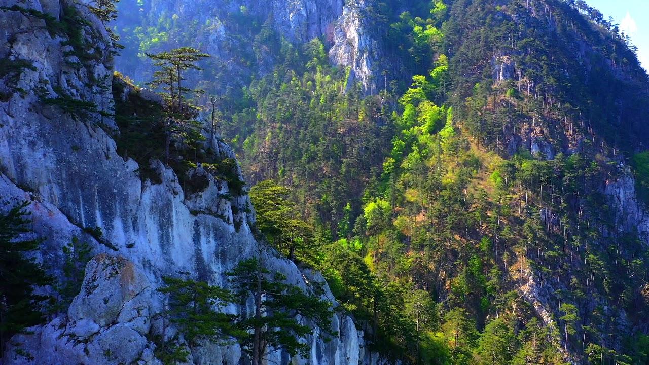 Valea Cernei, Parcul National Domogled