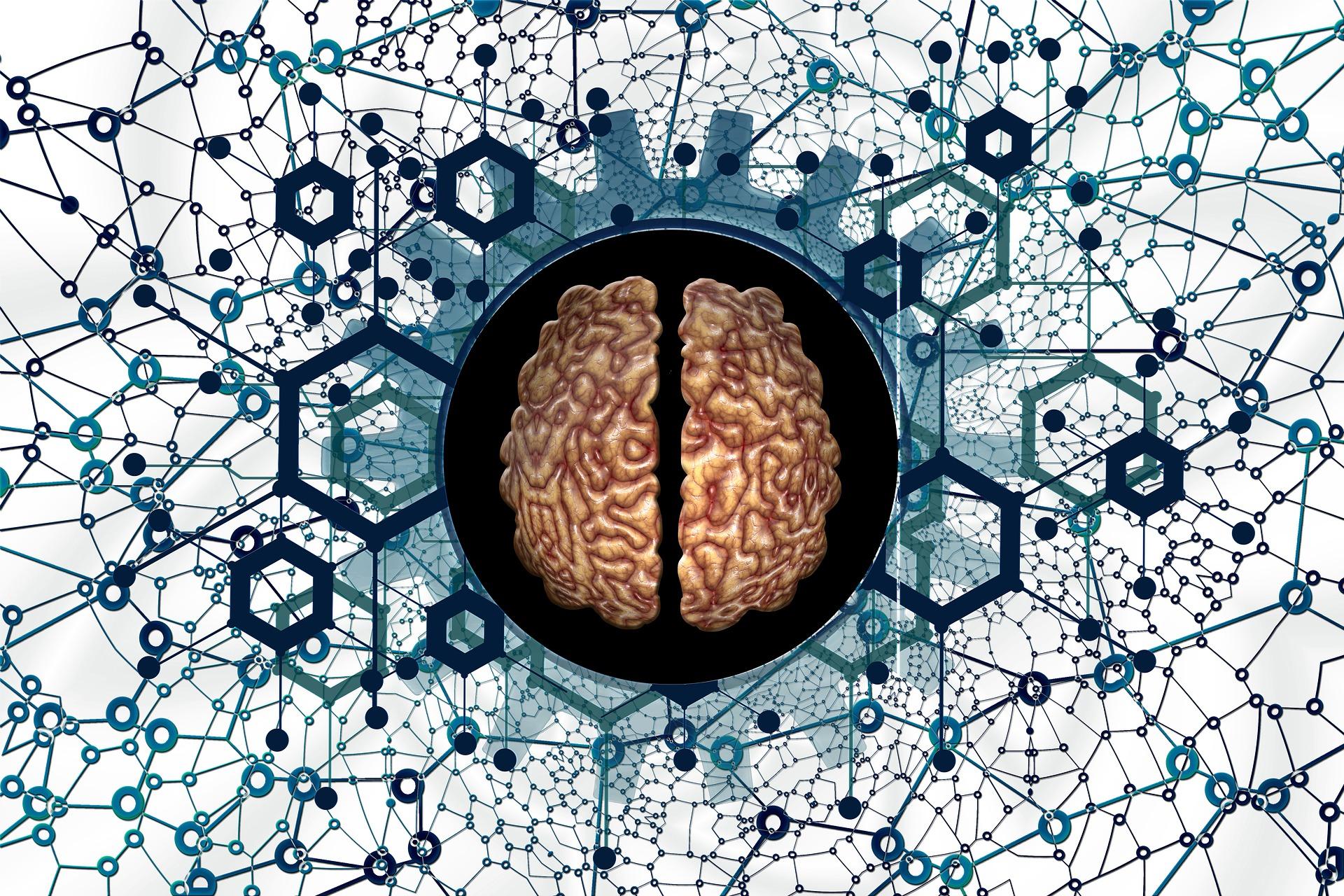 Creierul uman si biasurile cognitive