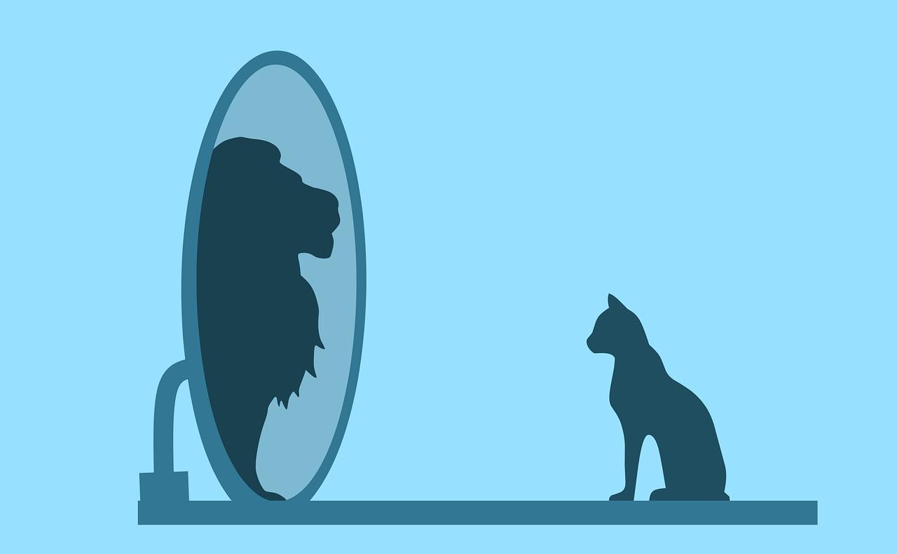 Imaginea din oglinda