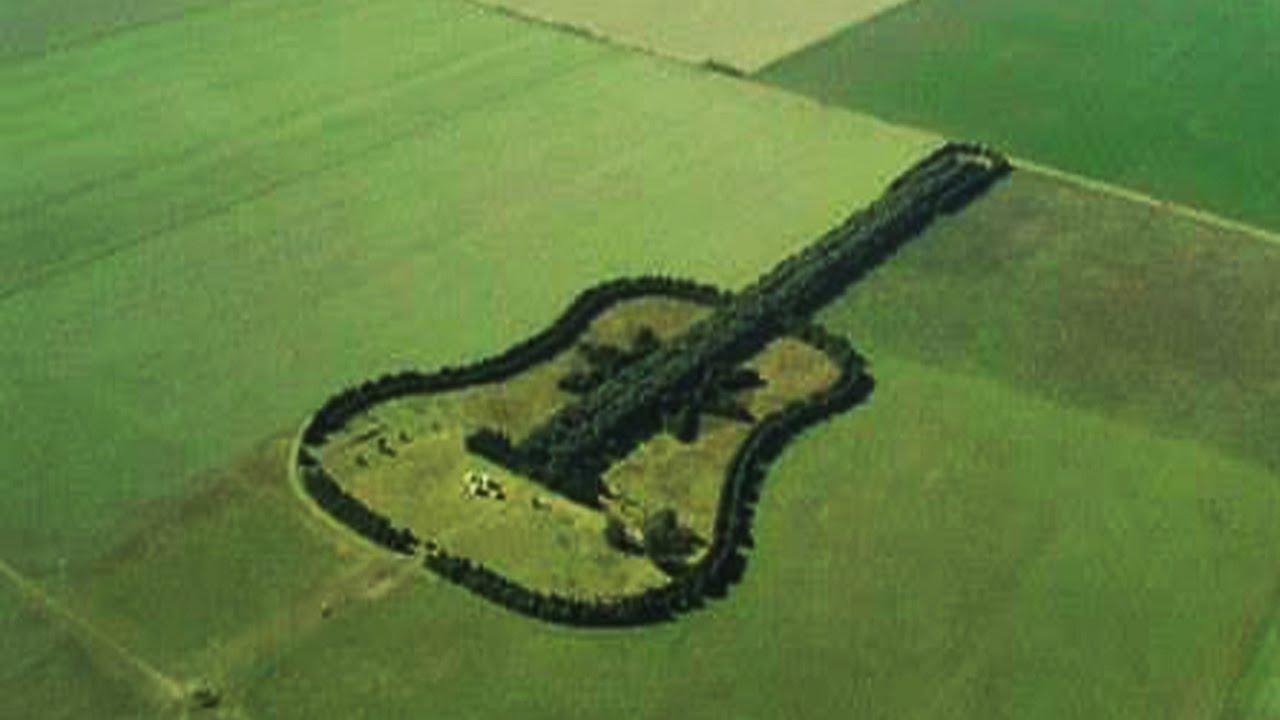O pădure în formă de chitară, în Argentina