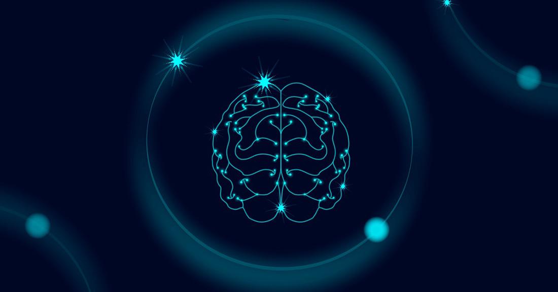 Proiectul Blue Brain, Sursa Techlang