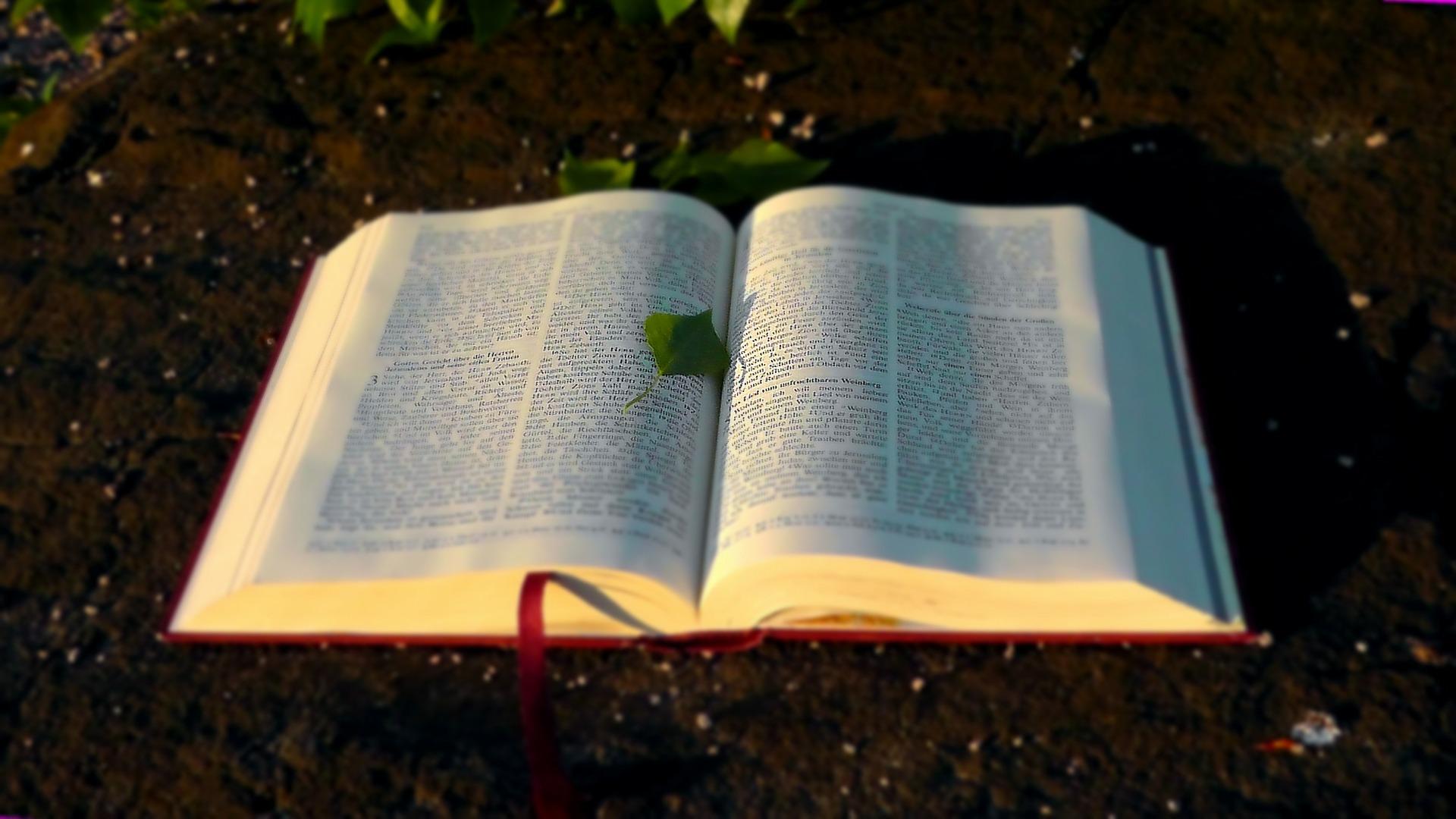 Cele mai citite cărţi din toate timpurile – Biblia